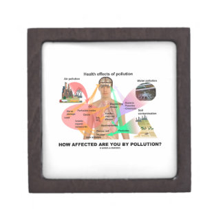 How Affected Are You By Pollution? (Physiology) Jewelry Box