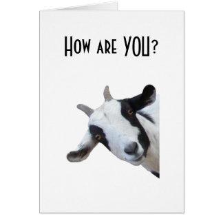 "HOW ARE ""YOU"" CAREGIVER CARD"