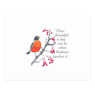 How Beautiful Post Card