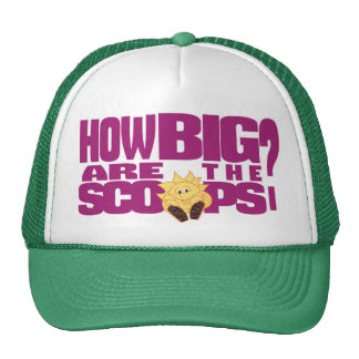 How big are the scoops? trucker hat