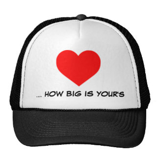HOW BIG IS YOUR'S MESH HATS