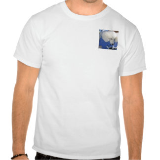 How 'Bout A Hug? T Shirt