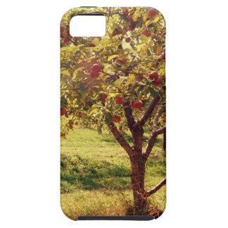 How 'bout Them Apples iPhone 5 Covers