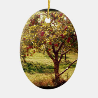 How 'bout Them Apples Double-Sided Oval Ceramic Christmas Ornament