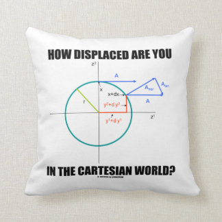 How Displaced Are You In The Cartesian World? Throw Pillow