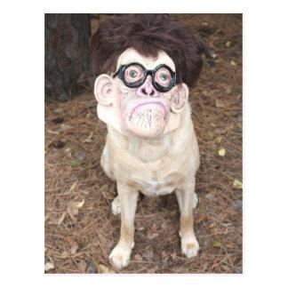 How do you like my costume postcards