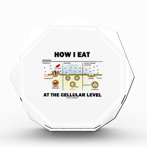 How I Eat At The Cellular Level (Endocytosis) Awards
