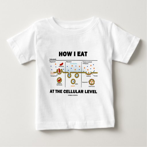 How I Eat At The Cellular Level (Endocytosis) T Shirts