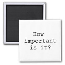 How Important Is It Magnet