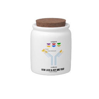 How Lock And Key Are You? (Antigen Antibody) Candy Jars