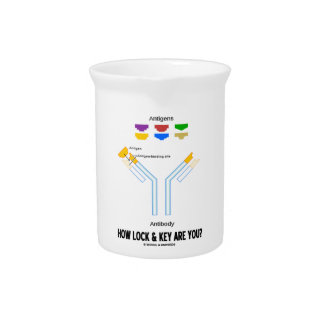 How Lock And Key Are You? (Antigen Antibody) Drink Pitchers