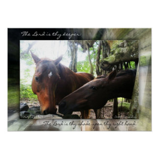 How Many Horses? Poster