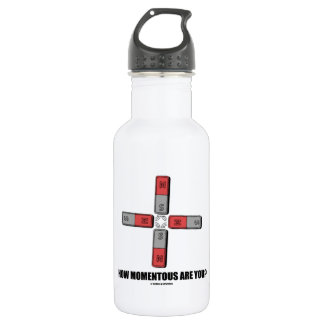 How Momentous Are You? (Quadrupole Moment) Stainless Steel Water Bottle