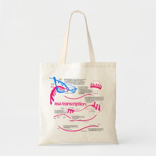 How mRNA is Created in a Nucleus Diagram Tote Bag
