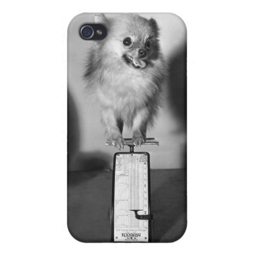 how much does iphone weigh how much do i weigh covers for iphone 4 zazzle 17042