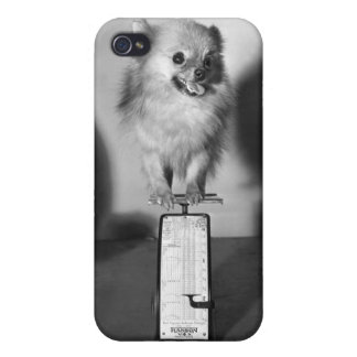 How Much Do I Weigh? iPhone 4 Cover