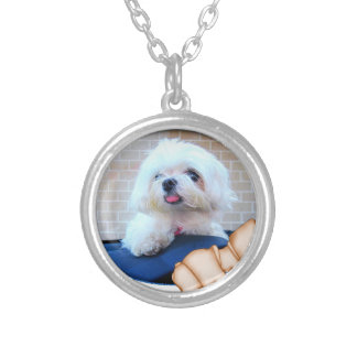 How Much Is That Doggie In The Window Silver Plated Necklace