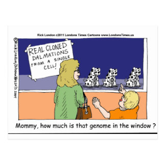 How Much Is That Genome Dalmatian In The Window? Postcard