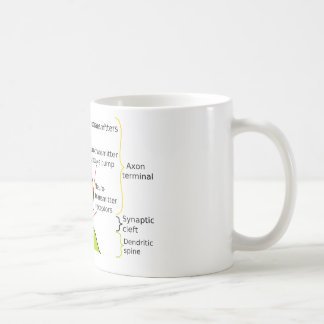 How Nerve Signals Are Sent With Synapses Diagram Mug