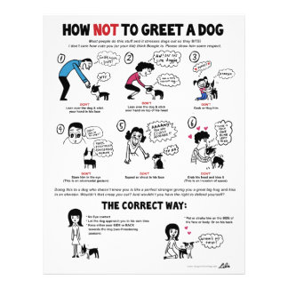 "How Not To Greet A Dog - 8.5"" x 11"" flyers"