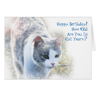 How Old Are You in Cat Years Birthday Card