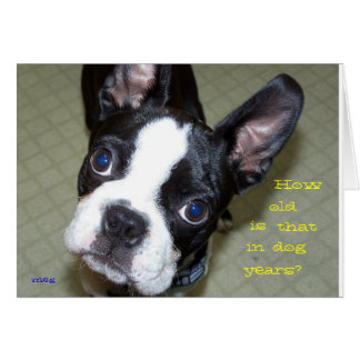 How Old In Dog Years? Card