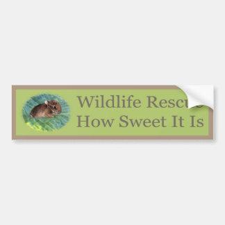 How Sweet Rescue - Bunny Car Bumper Sticker