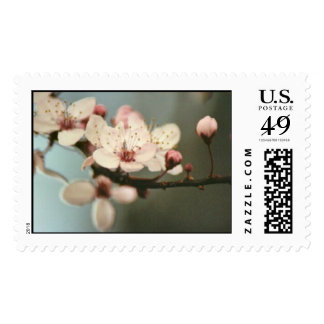 How Sweet The Blossom Postage Stamp