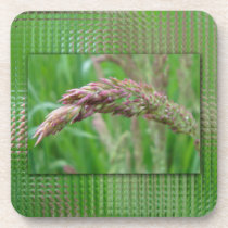 How the Grass Grows Cork Coaster