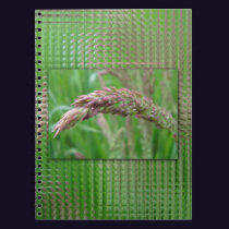 How the Grass Grows Notebook