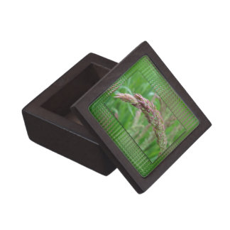 How the Grass Grows Premium Gift Box
