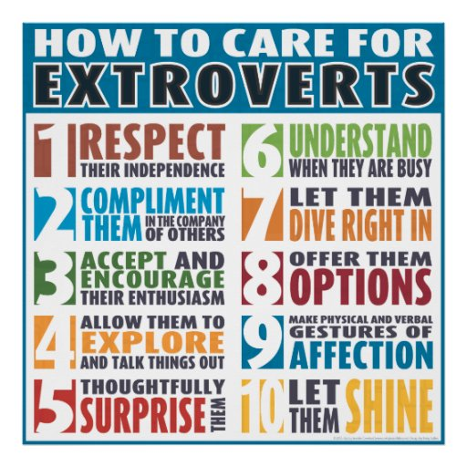 How To Care For Extroverts (Bold) Posters