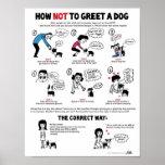 boston terrier, dogs, dog behavior, training,