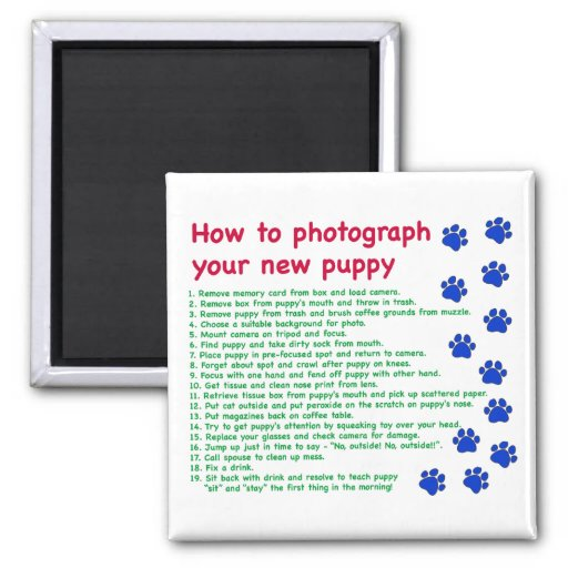 How to photograph your new puppy 2 inch square magnet
