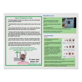 How To Remove a Tick Poster for Lyme Awareness