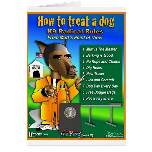 how to treat a dog card zazzle