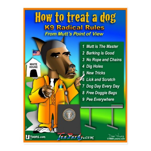 How To Treat a Dog Post Card