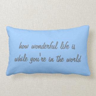 How wonderful throw pillows