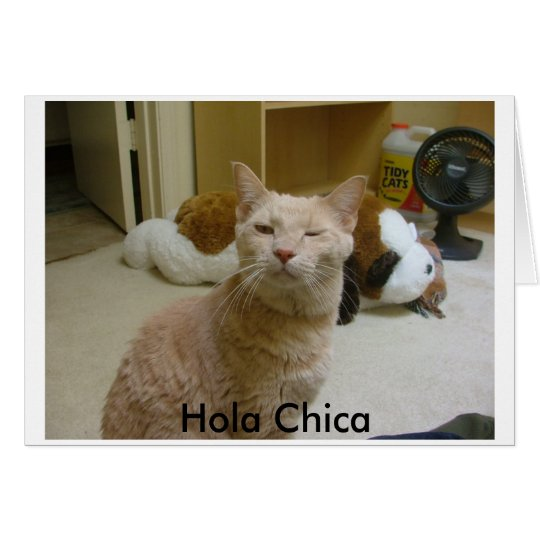 How you doin?, Hola Chica Card