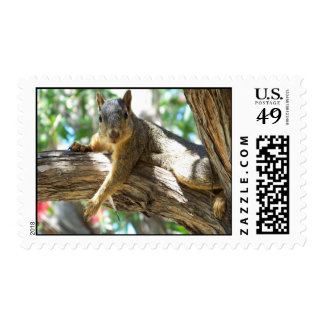 How You Doing _ Postage Postage Stamps