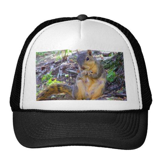 How you doing_ trucker hat