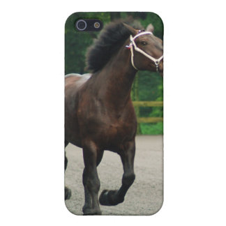 howard county fair cover for iPhone SE/5/5s