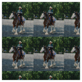 Howard County Horse Show in Maryland Fabric