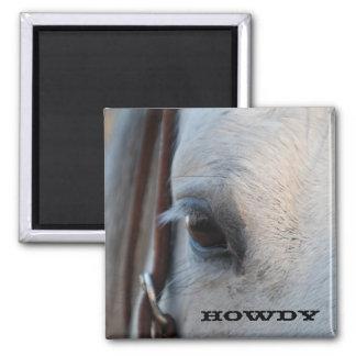Howdy imán del caballo