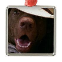 howdy metal ornament