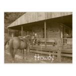 Howdy Postcards
