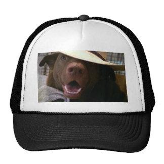 howdy trucker hat