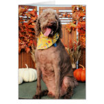 Howie - Labradoodle Photo-1 Card