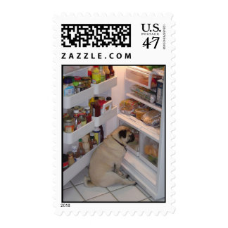 Howie Pee Pugpants Raids the Fridge Postage Stamps