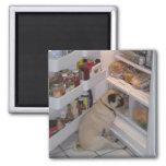 Howie Pee Pugpants Refrigerator Magnets